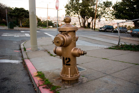 Golden Hydrant